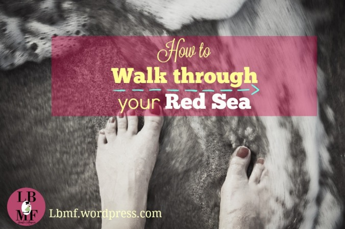 walk through red sea